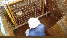土壌断面調査