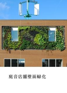 庭音店舗壁面緑化
